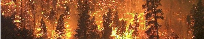 incendio-forestal-from-wikimedia-commons